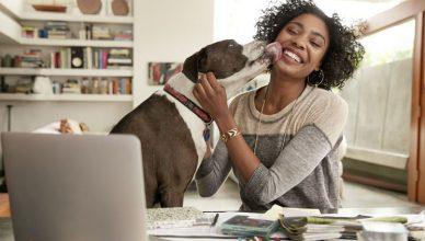 Uma mulher trabalhando em casa, brincando com o seu cachorro